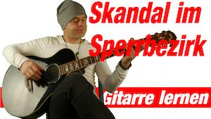 Skandal im Sperrbezirk Spider Murphy Gang Gitarre | Skandal um Rosi Gitarre